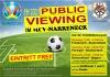 Public Viewing EM2021
